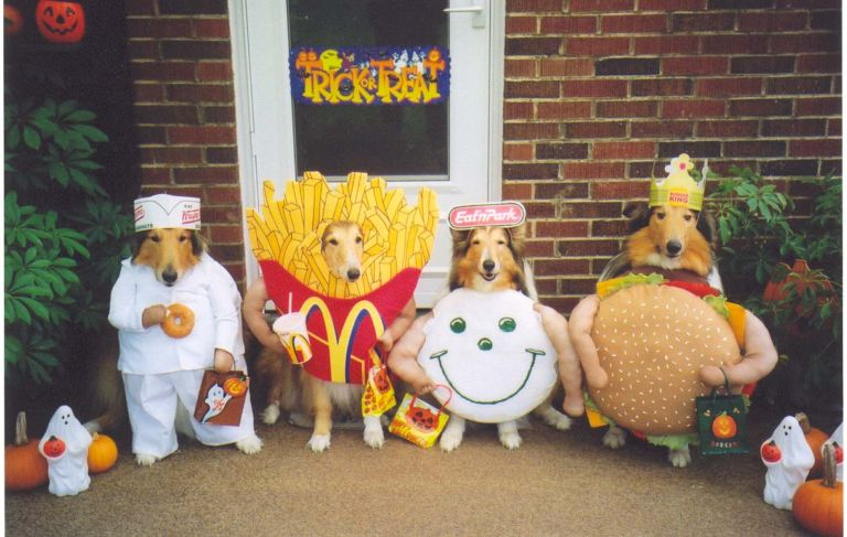 http://3113.com/cute_pet_costumes/mascot_dogs.jpg